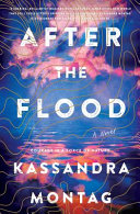 "Image for ""After the Flood"""