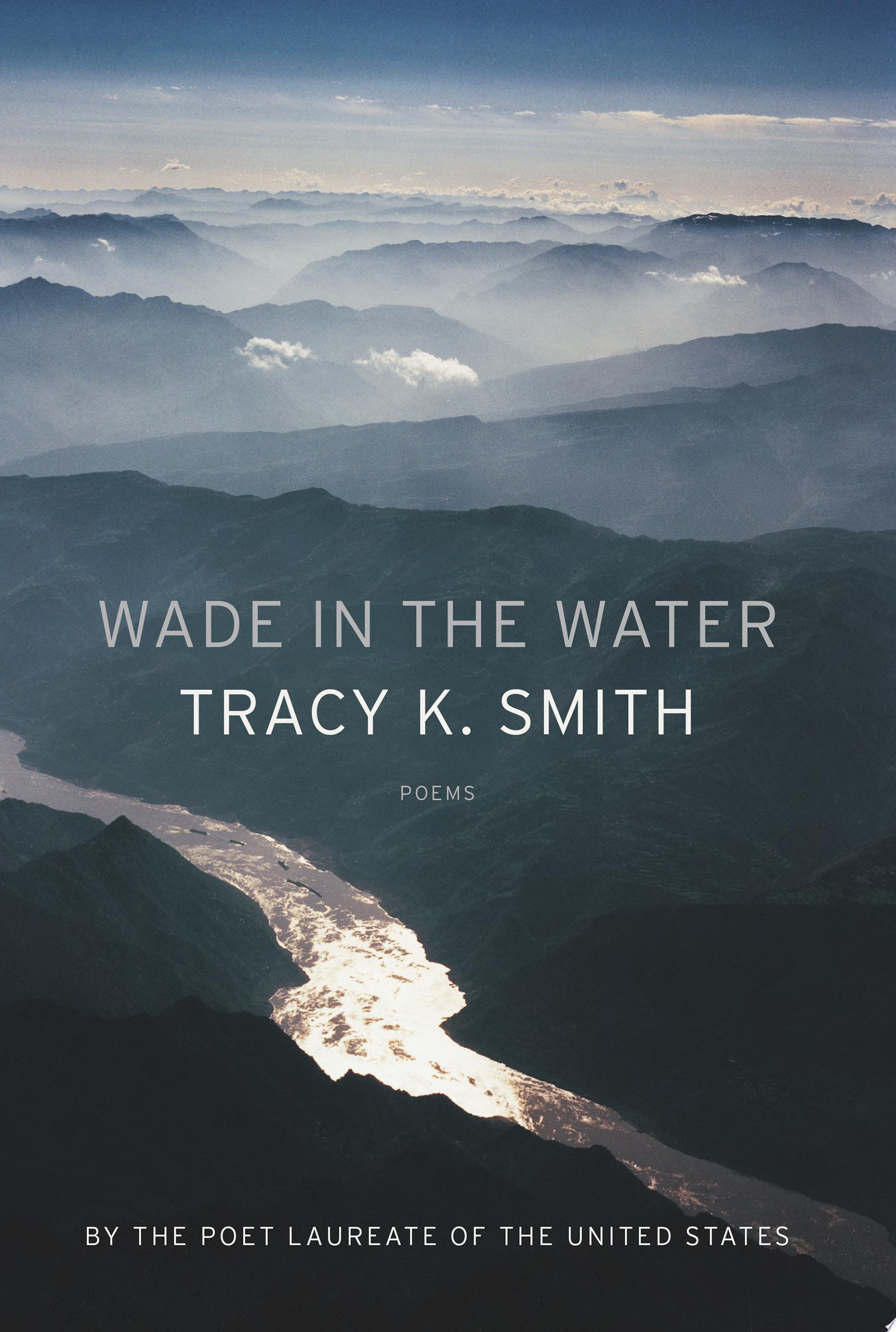 "Image for ""Wade in the Water"""