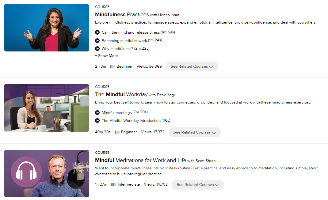 Lynda.com video courses screenshot