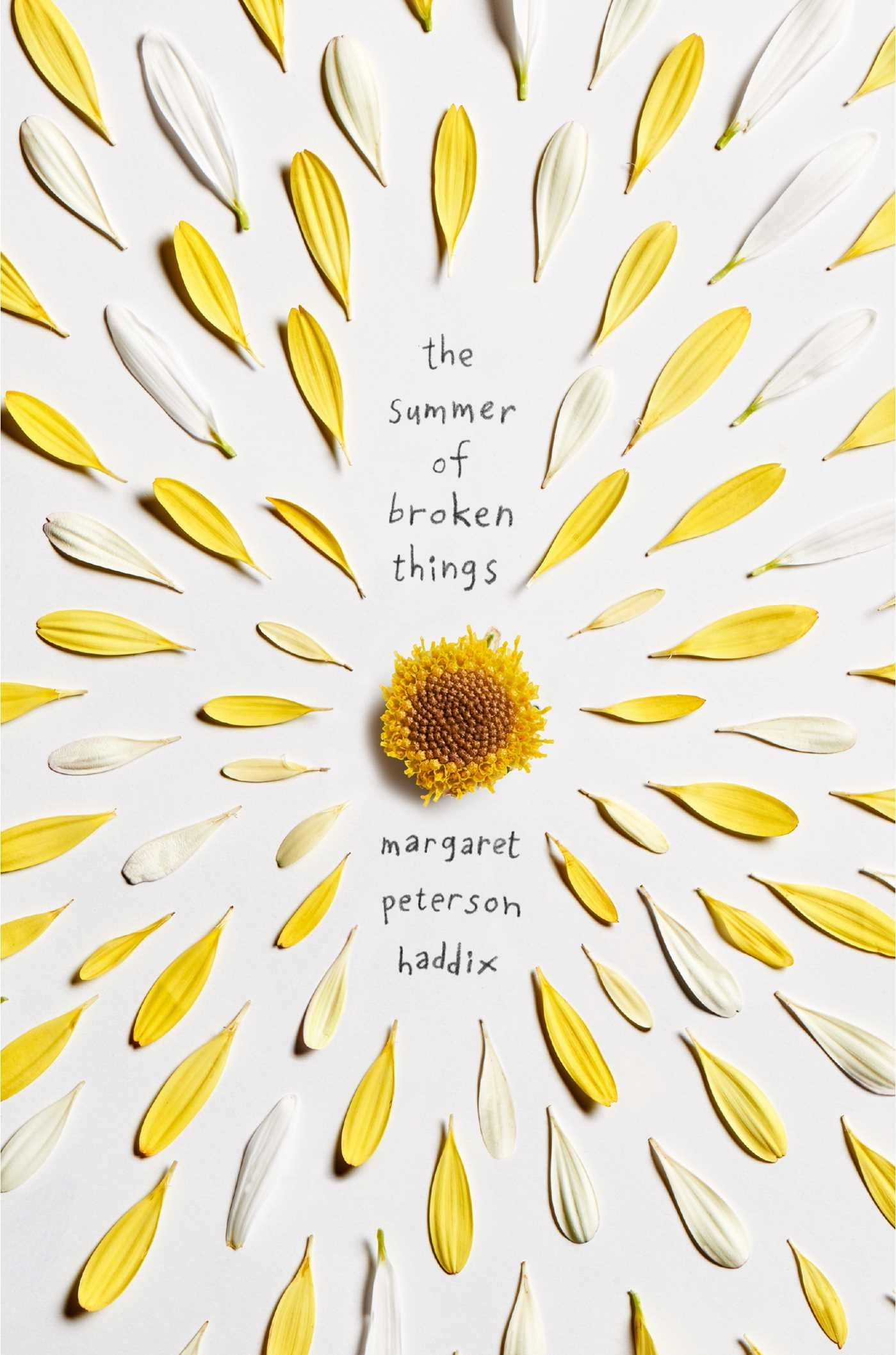 "Image for ""The Summer of Broken Things"""