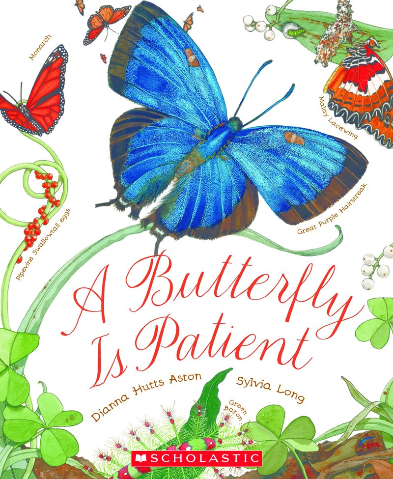 cover of A Butterfly is Patient