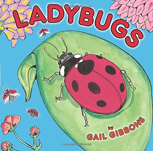 cover of Ladybugs